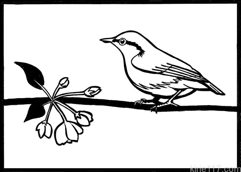 鳥 桜 切り絵 図案 下絵