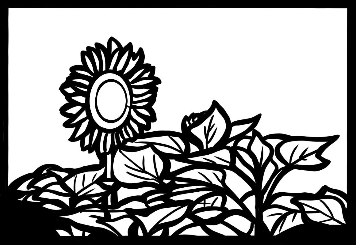 向日葵 ひまわり 切り絵 図案 下絵